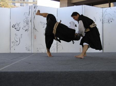 Shorinji Kempo -- not just a Martial Art, it's strongly tied into a specific religion. To them, fighting is the same as praying. Don't try scrambling out of those throws! You may lose an arm!