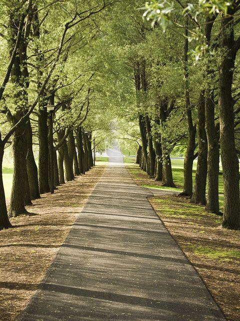 Oak Drive at Colgate University in Hamilton NY