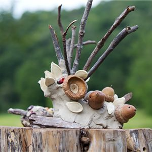 Creating Clay Creatures: add natural loose parts to your clay activity to open up even more creative possibilities!