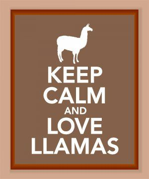 Totes true! I LOVE LLAMAS!!!!!! But how can you keep calm when you are in love with llamas?????