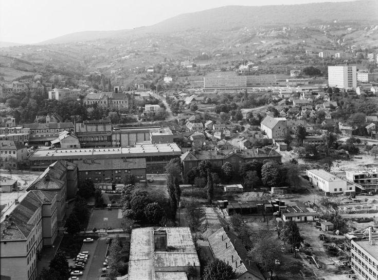 látkép a Magasház tetejéről a Rókusdomb felé nézve.