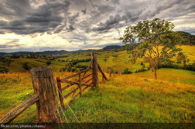Barrington Tops National Park, Sydney by Christopher Chang