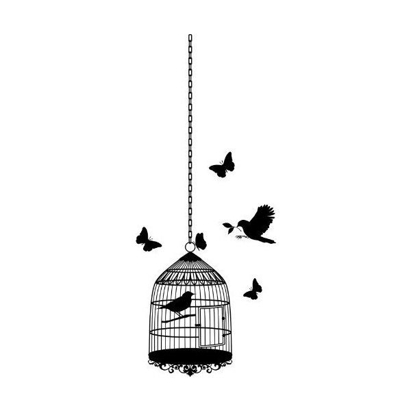 Amazon.com: Lot 26 Studio B1376-L Burnish Vinyl Wall Decal, Birdcage,... ($25) ❤ liked on Polyvore