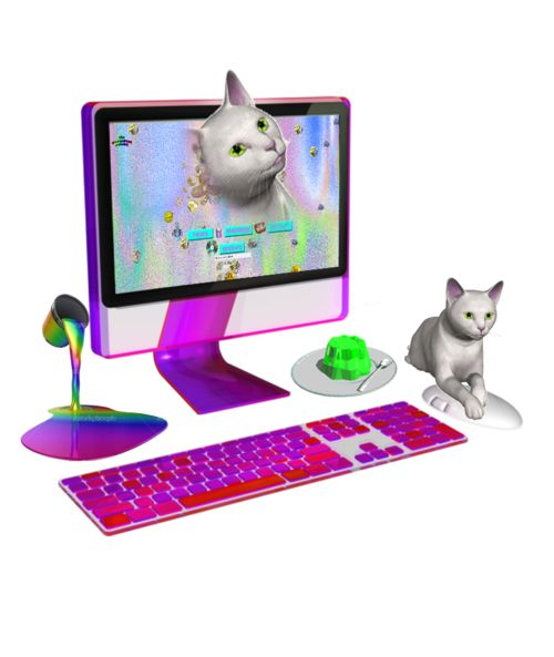 Cats and a Mac