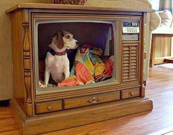 Idées de recyclages:que faire avec une vielle télévision?