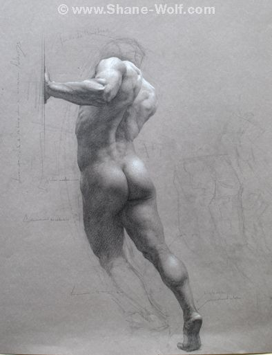 Shane Wolf: Figure Drawings: all works exclusively from life