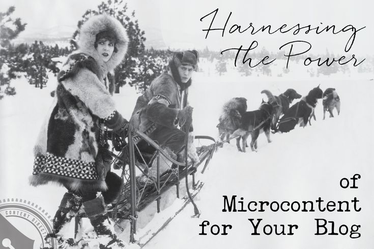Harnessing the Power of Microcontent for Your Blog | Blogging, Marketing, Entrepreneur