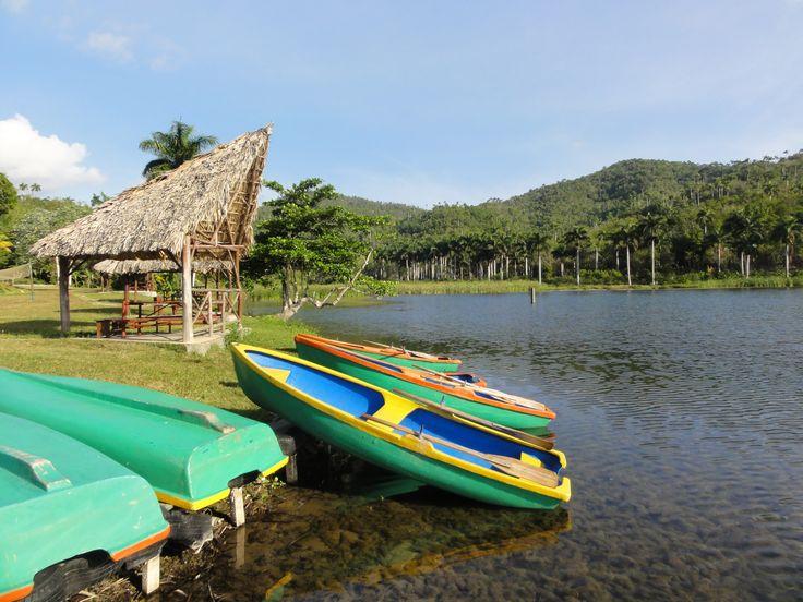Het door Unesco beschermde natuurreservaat Las Terrazas laat je de groene kant zien van Cuba. Reis naar oude koffieplantages, drink koffie met Cubanen en neem een verfrissende duik in natuurlijke baden.