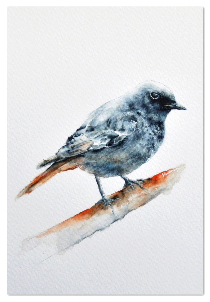 Watercolor - Izabela Pawlaczyk