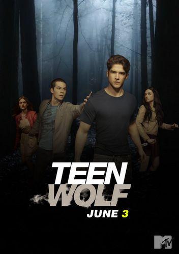 Teen Wolf : les adolescents qui ont les crocs : Reprenant l'idée et le nom de la comédie de Rod Daniel sortie en 1985, Teen Wolf est une série fantastique sur les loups garous. Si le concept est connu, le feuilleton relève brillamment le challenge de ne pas tomber dans les clichés.