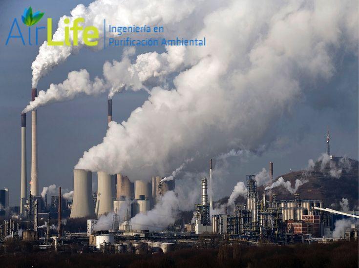 #airlife #aire #previsión #virus #hongos #bacterias #esporas #purificación  purificación de aire Airlife te dice ¿que son los gases irritantes y como se manifiestan sus efectos? Se ve comúnmente cuando se mezclan limpiadores. Y Sus principales manifestaciones clínicas son irritación de vías respiratorias superiores e inferiores, con tos, disfonía, broncoespasmos, neumonitis química, edema agudo de pulmón, en 12 a 24 horas. Tratamiento: pueden resultar útiles nebulizaciones con solución…