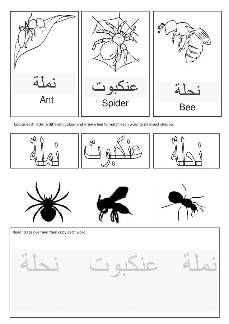 Arabic insects. Free Templates, links and more!