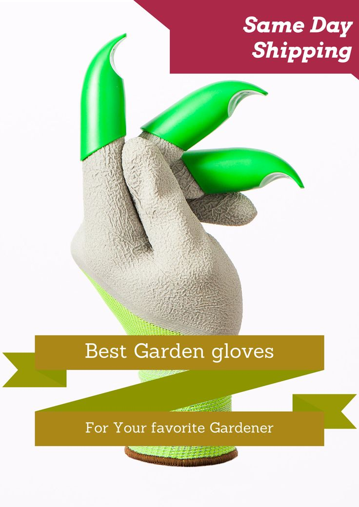 Great for light gardening tasks, & they don't wear out at the fingertips ~  The Gardening Tool That Fits Like A Glove !