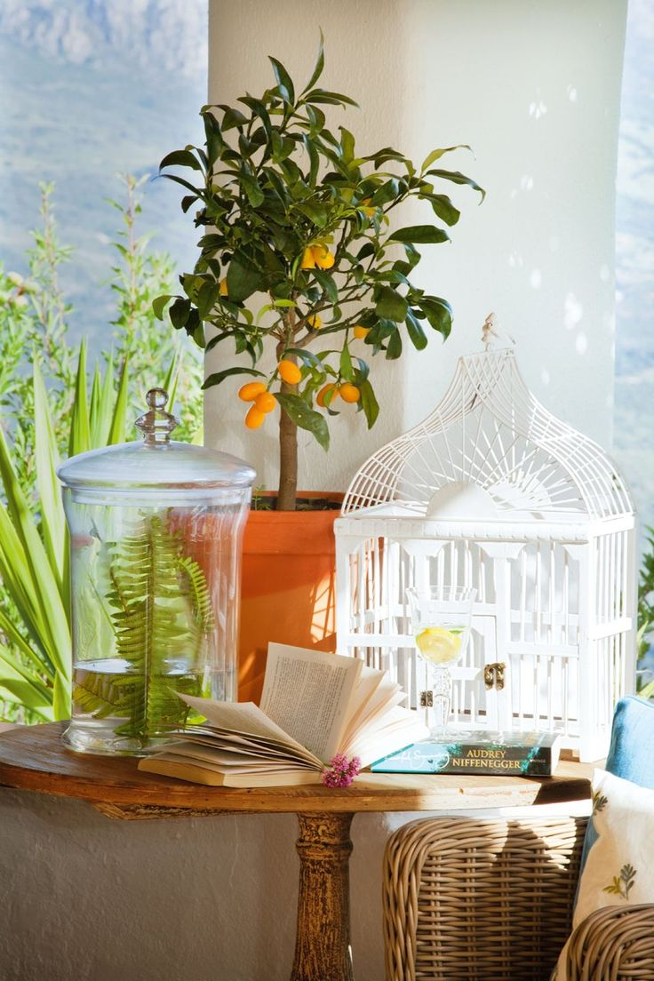 130 best Alfresco Living images on Pinterest | Outdoor living ...
