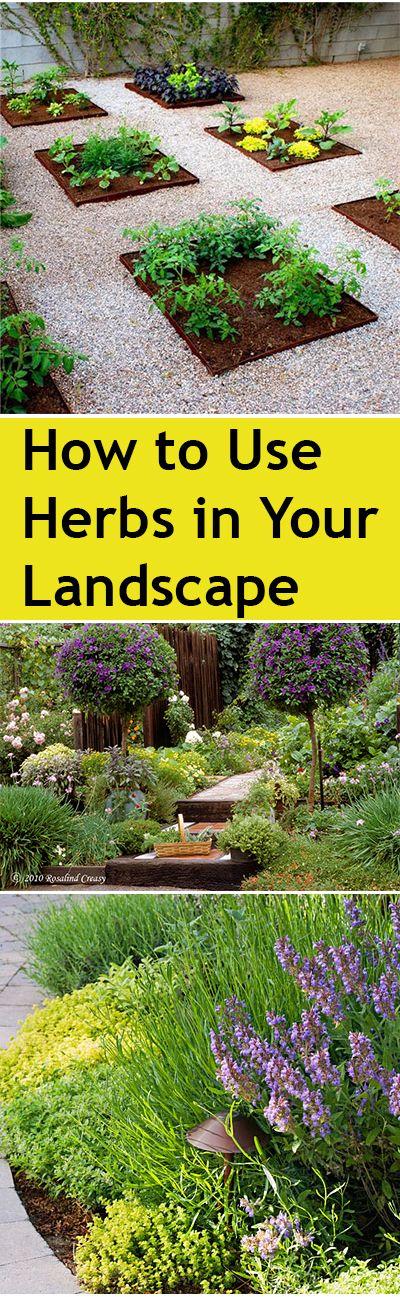 1272 best For the Yard images on Pinterest | Gardening, Backyard ...