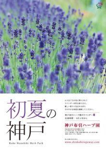ラベンダーのポスターをプレゼント!!   神戸布引ハーブ園/ロープウェイ