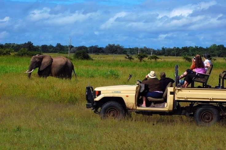 Game drive is South Luangwa National Park