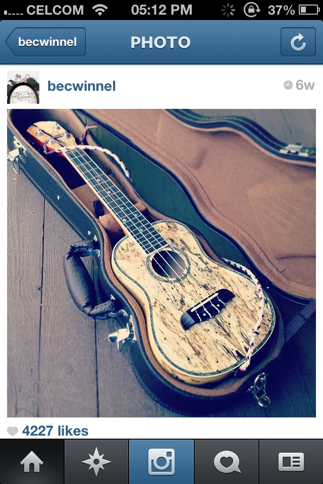 238 best uke images on pinterest guitars banjo and musicians ukulele fandeluxe Image collections