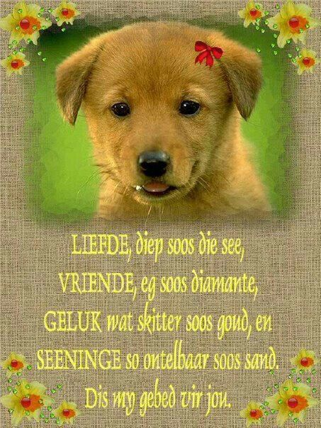 .Liefde... Vriende... Geluk....