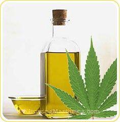 Marijuana Cuts Lung Cancer Tumor Growth In Half, Study Shows via Science Daily. #cannabisismedicine #cannabis www.cbdlifestore.com