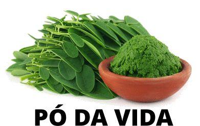 200 Gramas Do Pó Da Vida, Moringa Olifera +10 sementes de brinde - Frete Grátis p/ Todo Brasil