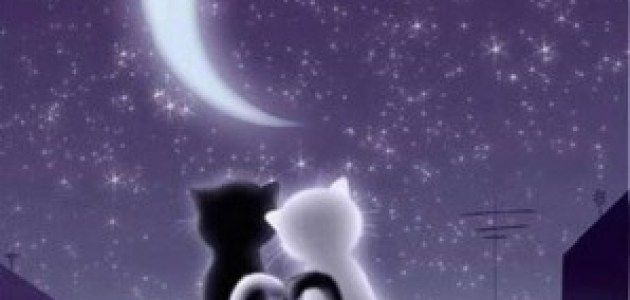 Romantic-Good-Night-