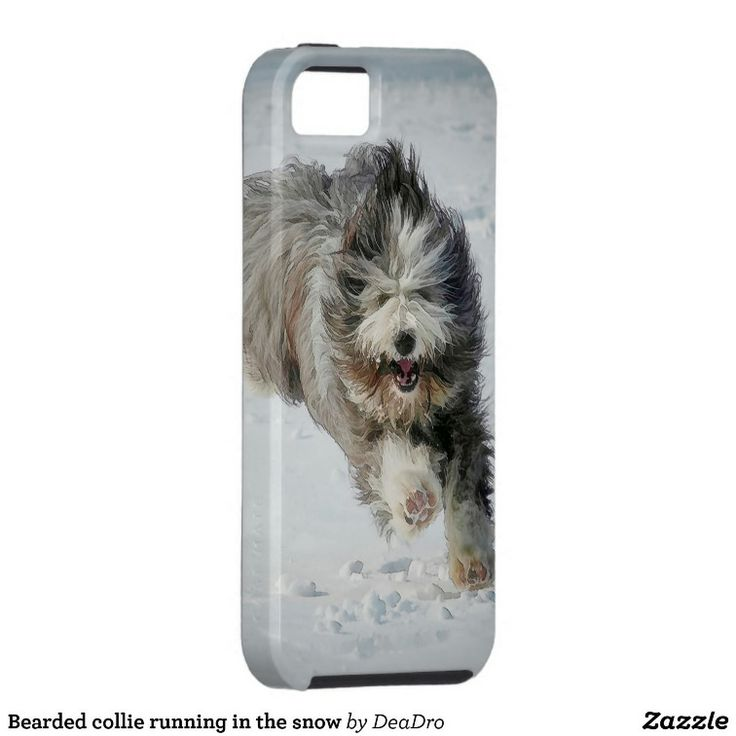 Case-Mate Vibe iPhone 5/5S Case Bearded collie running in the snow