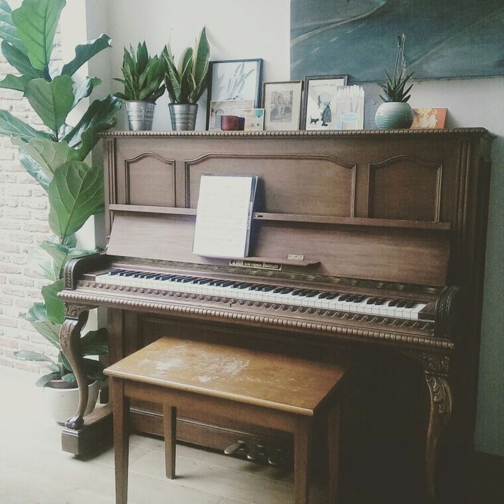 Home interior with piano and plants. Second hand piano