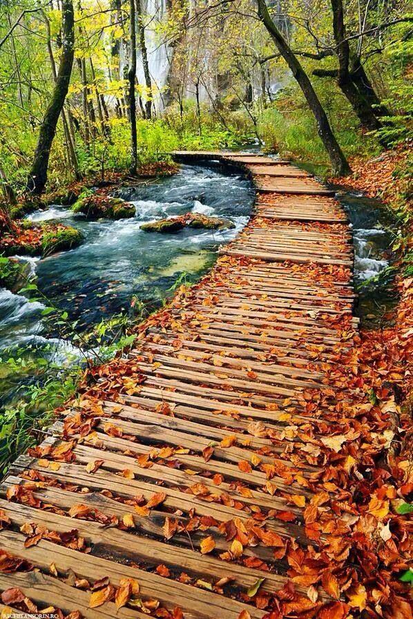The path not always taken