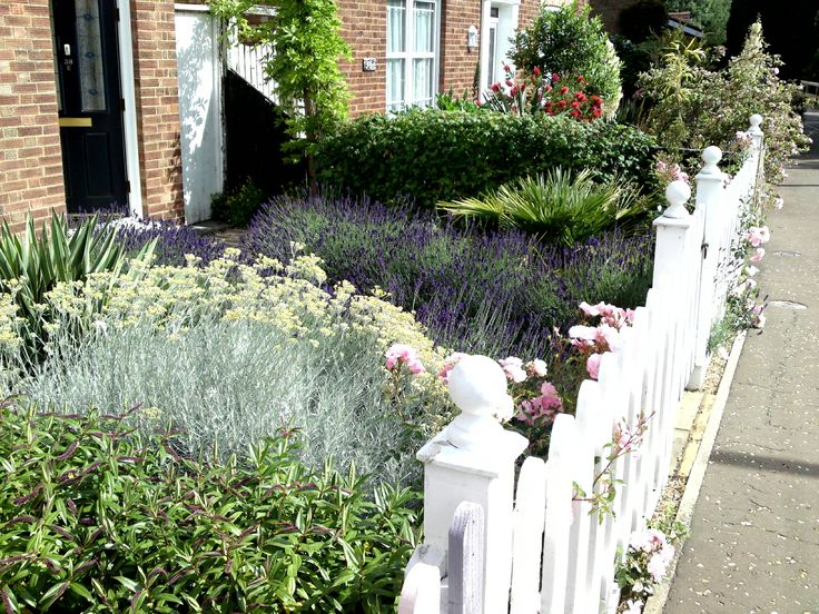 39 best garden design images on pinterest landscaping for Ornamental grass front yard