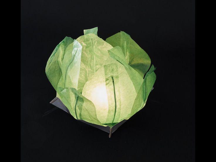 Ninfea Galleggiante di carta di riso verde.Diametro 30 cm. Sono inclusi la candela, il manuale e il pennarello. Riutilizzabile, basta cambiare la candela.Istruzioni, la preparazione è molto facileScrivere...