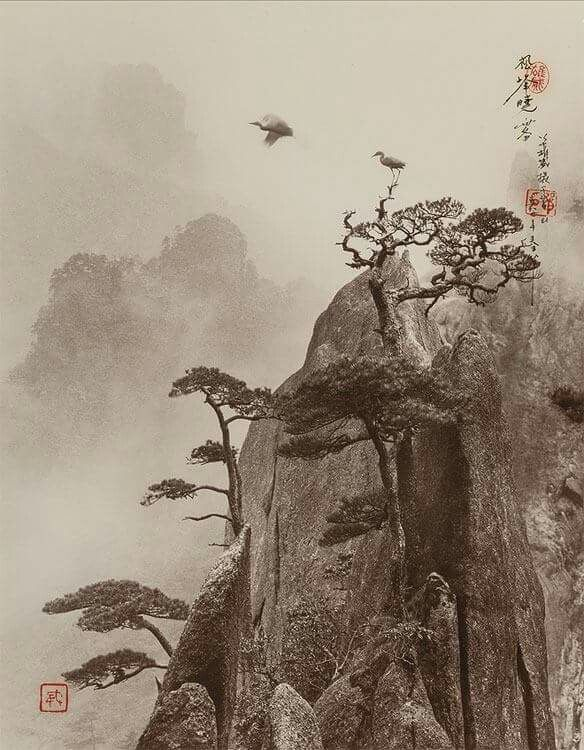 "Don Hong-Oai (Chinese, 1929–2004). ""Pine Peak, Yellow Mountain,"" 1989. Toned gelatin silver print, 14 x 11 in."