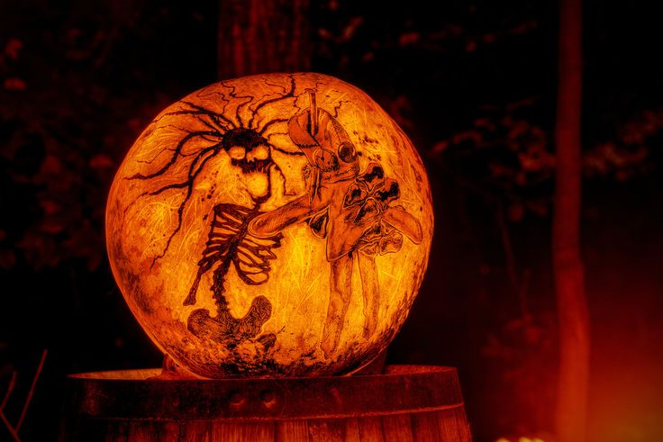 Best images about jack o pumpkins on pinterest