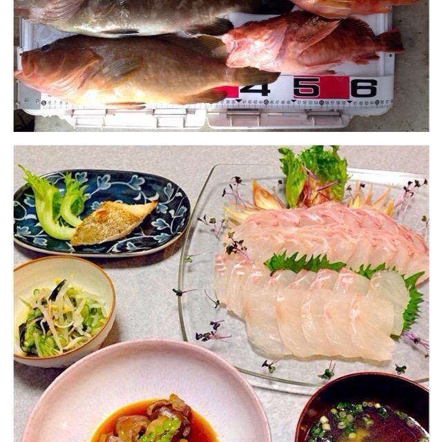 アコウ(手前)とクエ(奥)のお刺身、 クエの塩焼き、 クエの肝と胃袋の煮付け、 クエのお吸い物、 酢の物 です。 - 36件のもぐもぐ - きょうも 魚釣れたよ! by Orie Ueki