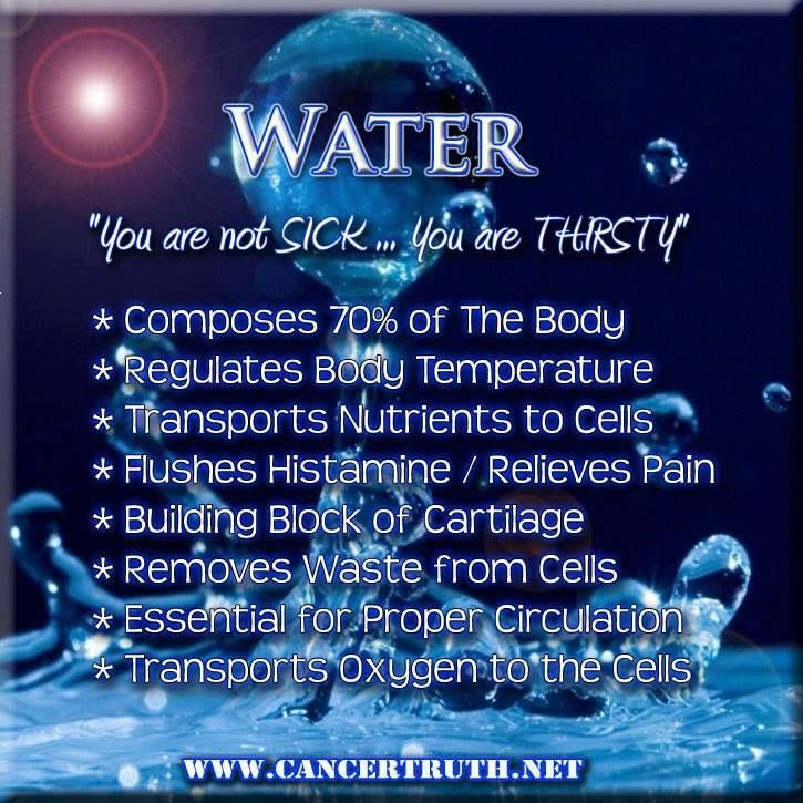 importance of water Water is essential for life the amount of fresh water on earth is limited, and its quality is under constant pressure preserving the quality of fresh water is important for the.