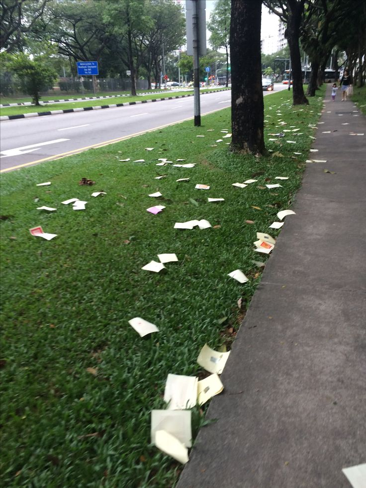 Singapore clean city Shame