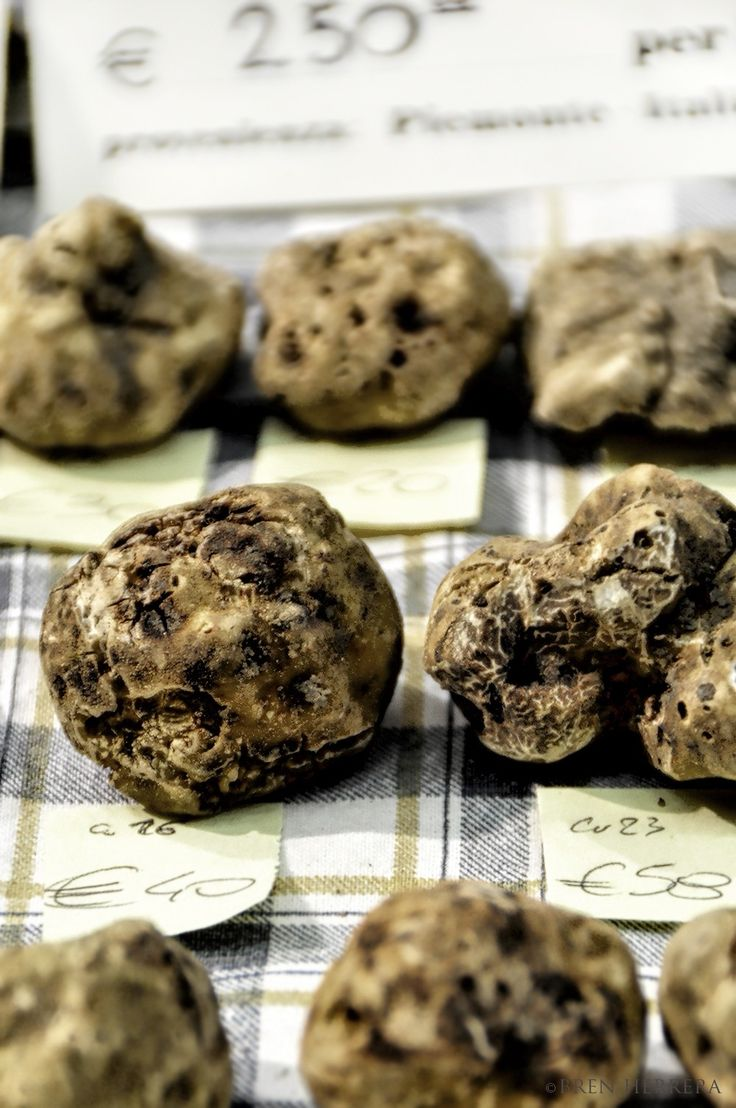 Two Reasons to Visit Alba, Italy: White Truffles and Hazelnuts