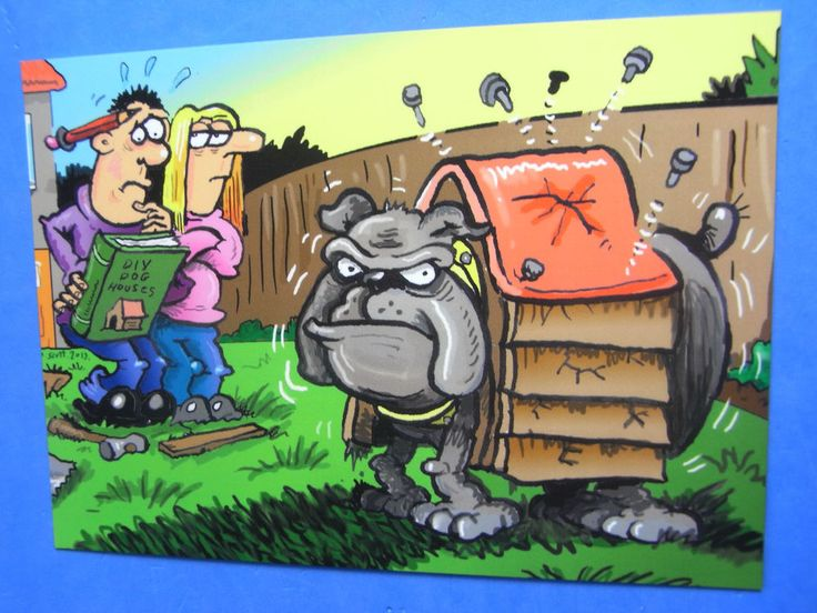 MODERN Comic Postcard BULLDOG Kennel Theme By Duncan Scott Beano Dandy Artist