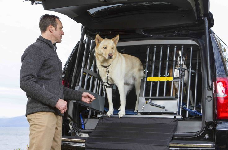 The Variogate vehicle pet barrier transforms your cargo area into a spacious, safe and secure environment for transporting pets. No modification to vehicle req.