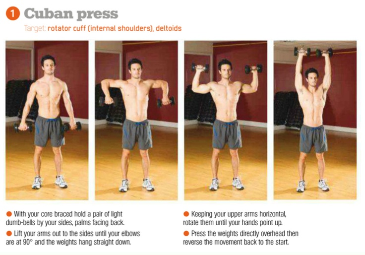 Cuban Press Good Exercise For Rotator Cuffs With Deltoids