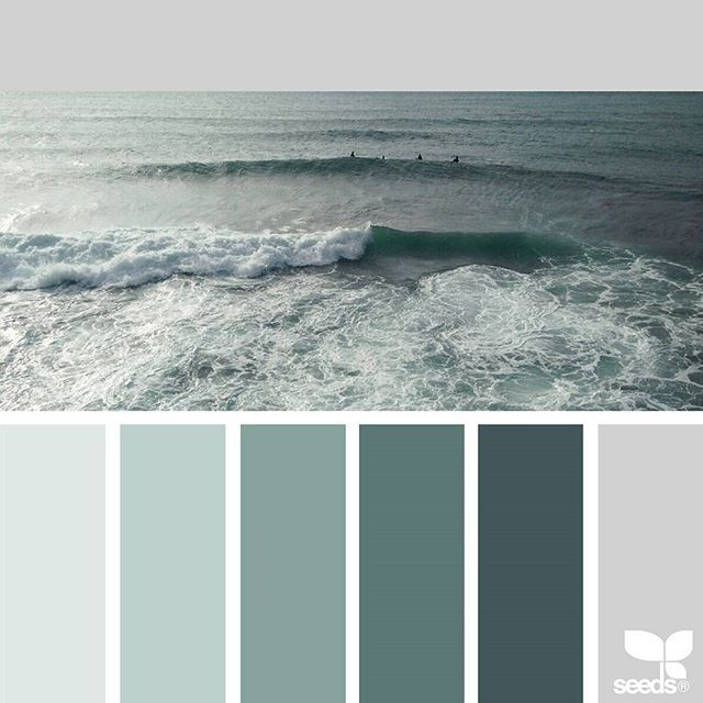 today's inspiration image for { color sea } is by @moimoibakery ... thank you, Elly, for another inspiring #SeedsColor image share!