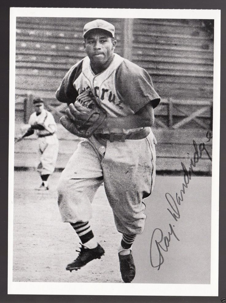 Ray Dandridge Negro Leagues Baseball Star Photo Modern Postcard
