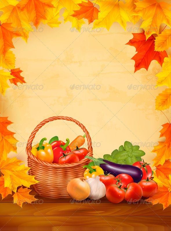 Autumn Background with Fresh Vegetables