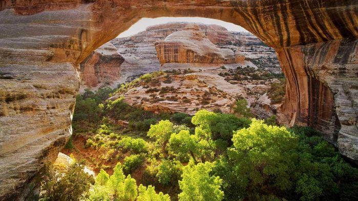 А это природный мост Сипапу. Коренные индейцы полагали, что мост создали боги - чтобы предки спустились на Землю...
