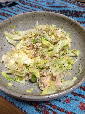 Tuna and Cabbage Salad