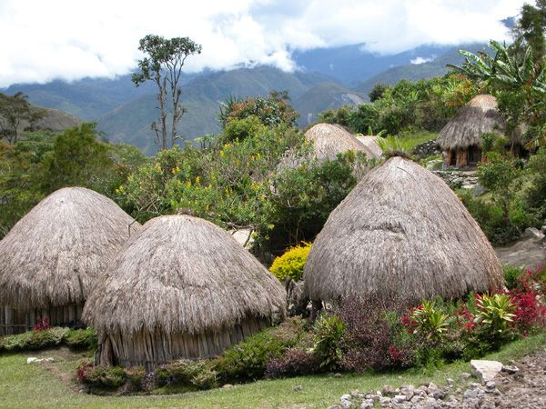 Discovering the Marvelous Tribal Life in Baliem Valley, Papua, Indonesia