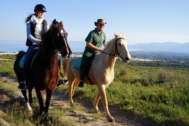 10 Things You Didn't Know About the Grootbos Experience | Grootbos #horses #horseriding #travel http://www.grootbos.com/en/blog/travel/10-things-you-didnt-know-about-the-grootbos-experience