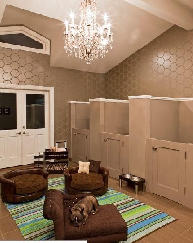 Beautiful Doggie Room!