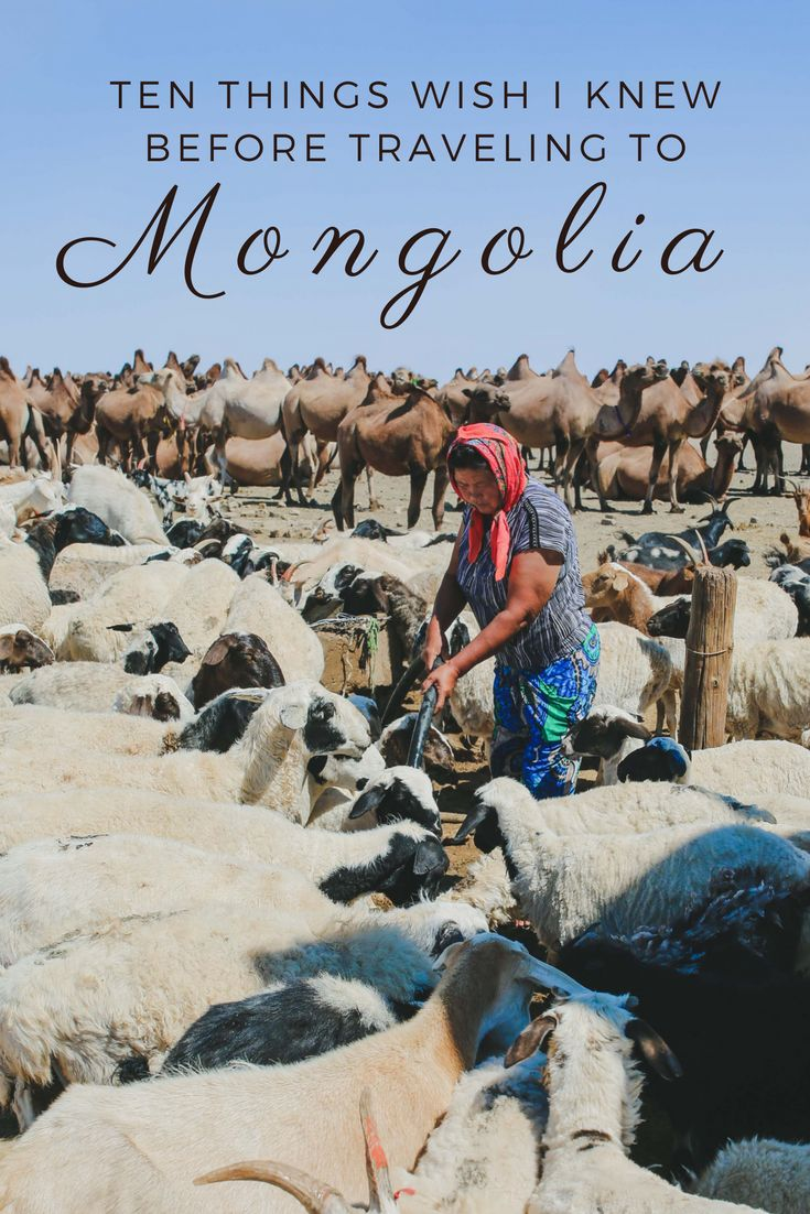 Mongolia is an enchantment for travelers interested in history, culture, nature, and adventure travel. And yet, it is ranked as one of the least visited countries for tourism in the world (134 out of 188). This is partly because up until Mongolia's Democrative Revolution in the 1990's, tourism was limited by their formerly communist government. … |  Travel Blogs || DominicanAbroad.Com |  https://dominicanabroad.com   #DominicanAbroad #travel #travelblog  #travelblogs #travelblogger #Mongolia