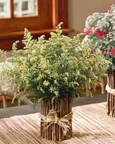 To complement a bouquet of wildflowers, Martha uses a charming twig  vase made from a coffee can and sticks. Her arrangement comprises false  Queen Anne's lace, goldenrod, and bee balm.